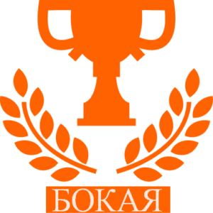 logo bokaya(1)